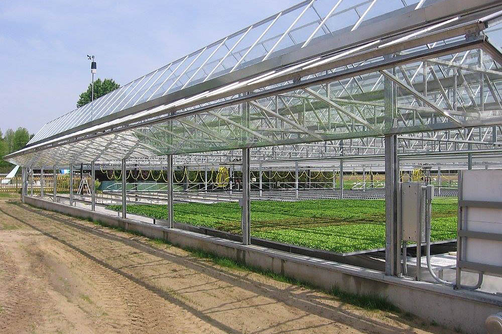 Steel Greenhouse Kits by CDN Buildings